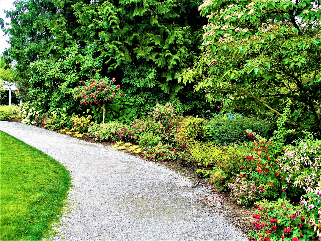 Driving Directions to Bellevue Botanical Garden From I-405, take the NE 8th Street East exit, turn right on 120th Avenue .Go south 3/4 mile to the first light and turn left onto Main Street.Go up the hill about 3 blocks The garden is on your right.